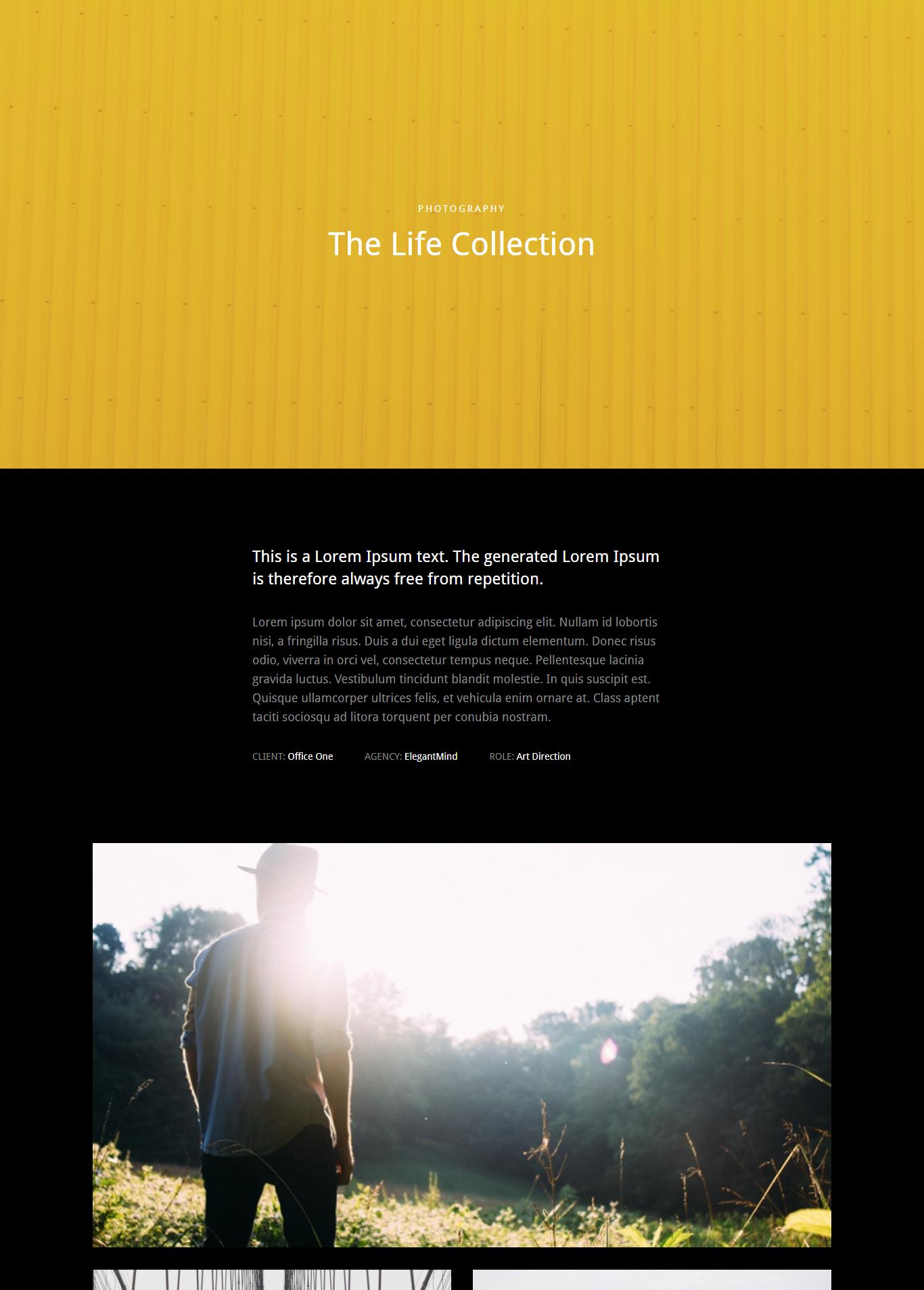 Portfolio Single Page